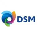 DSM_logo2-6ab7a8e9f4984c26b7ef1a535d843ad6.jpg
