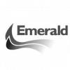 logo_emerald170-b4f4dbd922f81f7c4db9878c3c1ded56.jpg